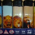 briquets lions
